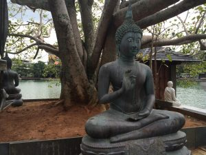 Buddha statue and big tree